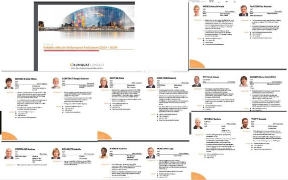 Senza categoria mario donnini in associazione europa for Nomi politici italiani