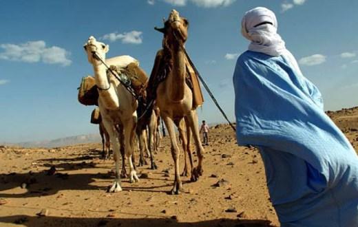 Tuareg-cop