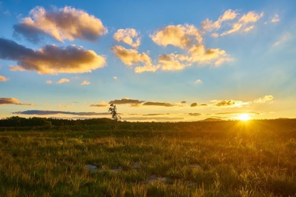landscape_sunset_australia_sky_sun_nature_meadow_outdoors-566958
